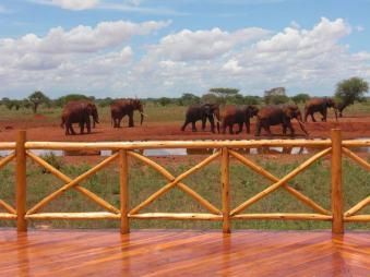 kenia-afrika-reise-bilder-117