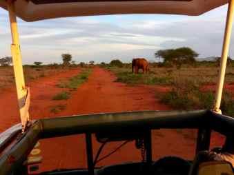 kenia-afrika-reise-bilder-192