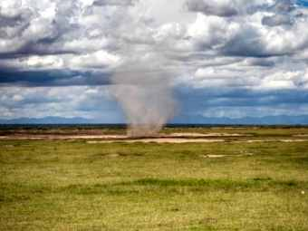Kleiner Hurrikan Serengeti Kenia
