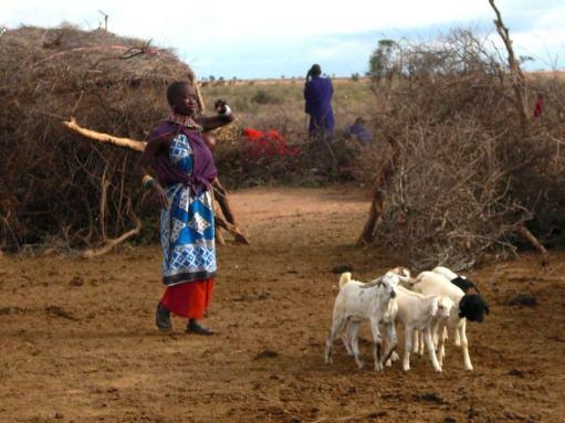kenia-afrika-reise-bilder-467