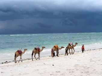 kenia-afrika-reise-bilder-573