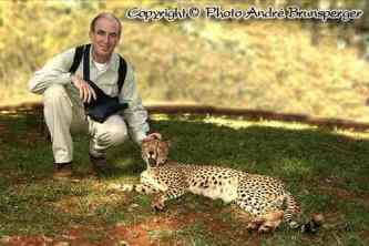 Ich streichle einen Geparden - kenia mein personliches konzept reise urlaub safaris afrika fuhrer