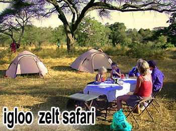 Safari mit gemischte Übernachtung für 4 Tage - igloo camping -