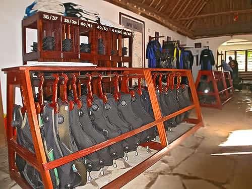 Tauchclubs - Kenia Diani tauchen sportfischen strandurlaub.
