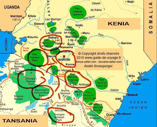 Tansania reise urlaub safaris tour