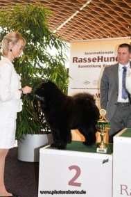 Chow Chow Kennel Hjelme Piuk Chow Possesses Black Passion BIG2 Rostock 2015