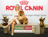 Chow Chow Kennel Hjelme Bao-Fang's Hong-Se Yue-Liang Stine Hjelme Outdoor Uden