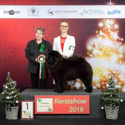 Best In Show Veteran Venray 2018