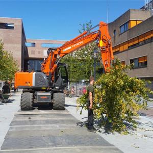 Loonbedrijf Kennes bomen plaatsen