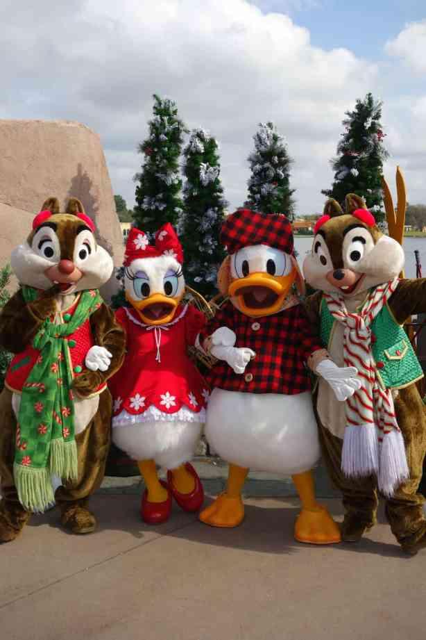Winter Wonderland Chip Dale Daisy Donald (3)