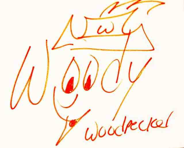 Woody Woodpecker autograph