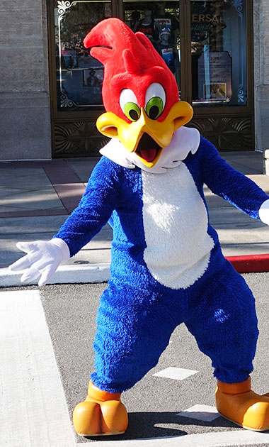 Woody Woodpecker meet and greet at Universal Studios Florida