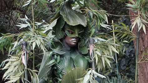 Bamboo (4)