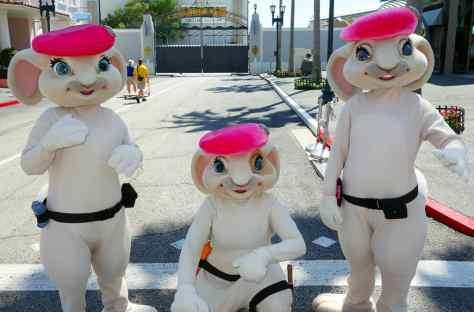 Pink Berets 2013