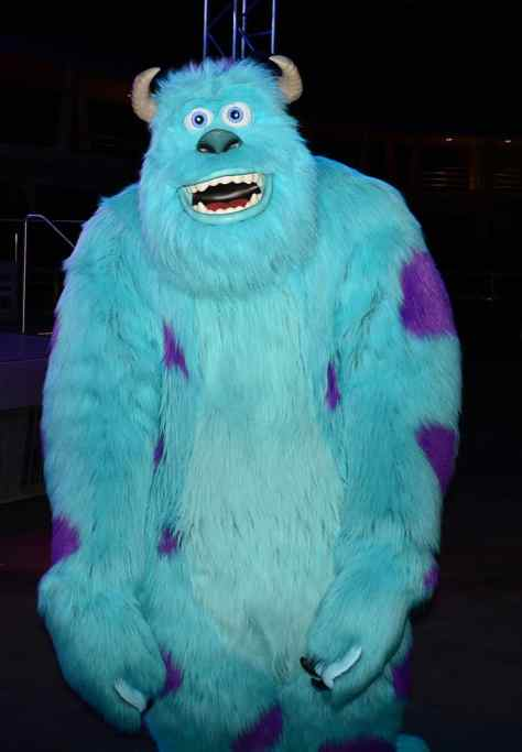 Mickey's Not So Scary Halloween Party 2014 Sulley