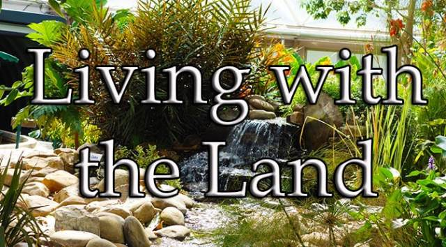 Living with the Land at Epcot in Walt Disney World