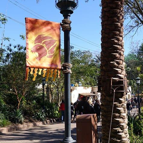 Lion Guard Adventure at Disney's Animal Kingdom (12)