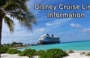 Disney Cruise Line Improving My Online Check-In Process and at the Terminal