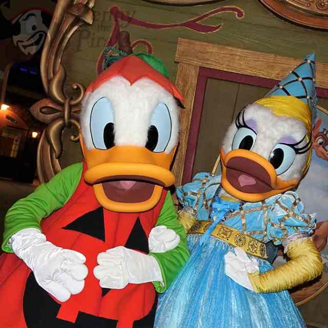 donald-duck-and-daisy-duck-at-mickeys-not-so-scary-halloween-party-2016
