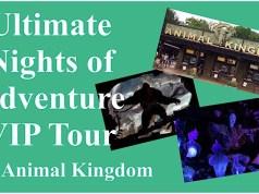 Ultimate Nights of Adventure VIP Tour at Animal Kingdom