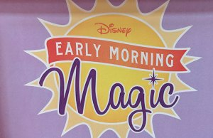 Hollywood Studios Disney Early Morning Magic Review