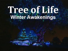 Tree of Life Winter Awakenings