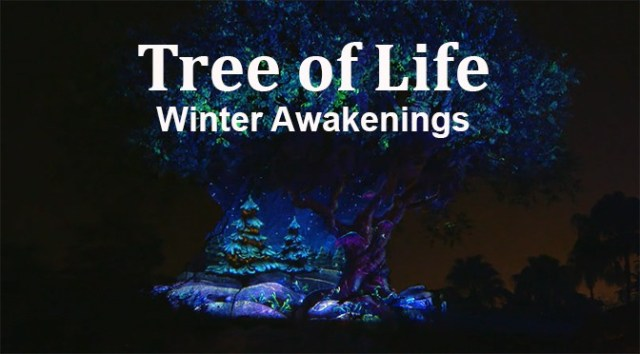 Tree of Life Winter Awakenings
