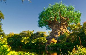 Take a Virtual Tour of Animal Kingdom with Joe Rohde!