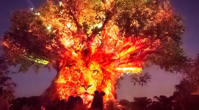 Another Animal Kingdom After Hours Event Sold Out