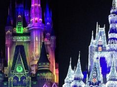 Mickey's Not-So-Scary Halloween Party vs Mickey's Very Merry Christmas Party