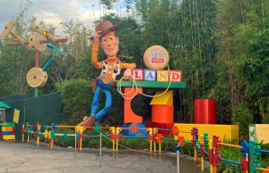 Disney to Release Additional Park Passes