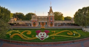 Disneyland Reveals Mandatory Safety Guidelines