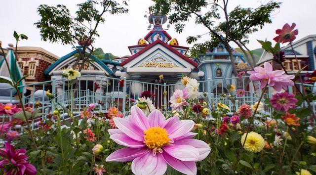 Do We Have a Possible Reopening Date for Disneyland?