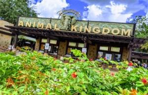 New #DisneyCastLife Video Provides Updates on Disney Parks Around the World