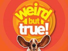 Weird But True! Now on Disney+