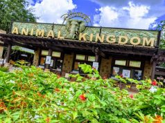 This fun Animal Kingdom distraction will reopen with new prizes!