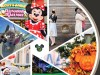 Disney Offers Memory Maker Special Offer For the Holidays