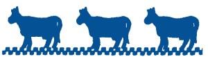 Jill & Company Logo-1