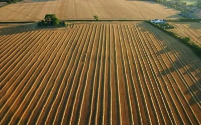 Kent Ballooning | Straight Lines