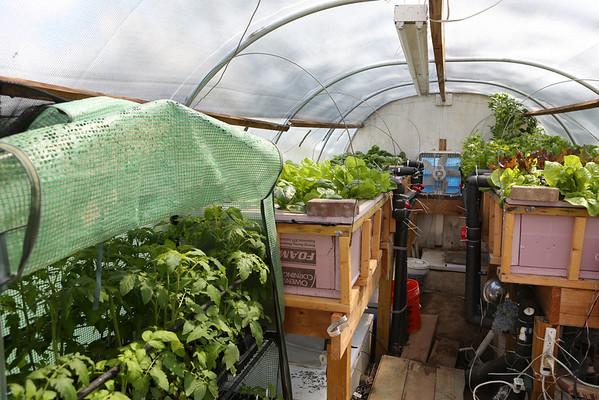 Cold Weather Aquaponics Greenhouse Shot