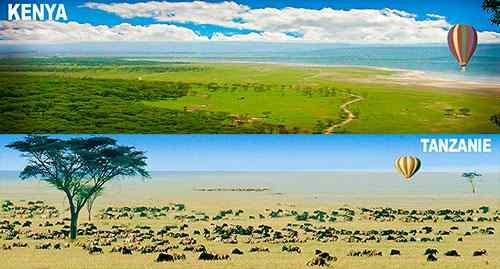 Différences entre Kenya et Tanzanie