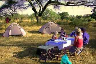 Safari communier avec la nature en privé ou en groupe