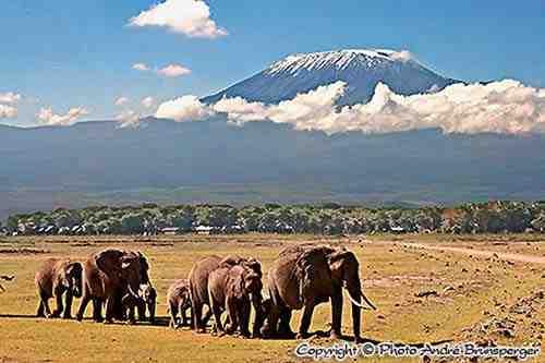 Voyage de Noces 10jours Kenya Tanzanie