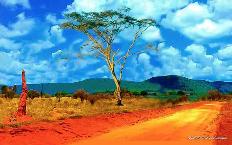 Tsavo - Kenya Tsavo Amboseli