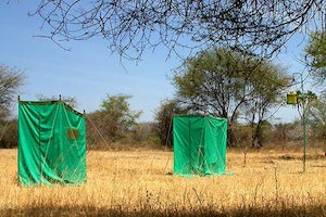 Kenya travel safari wild camping in the Kenya bush.