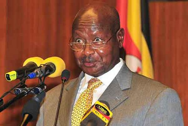 Why President Museveni wants all cows to have birth certificate in Uganda