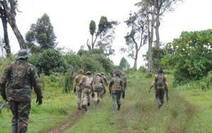Kenya Forest Service officers patrolling Mbooni forest.