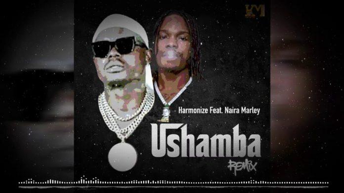 Harmonize Ft Naira Marley – Ushamba (Remix)
