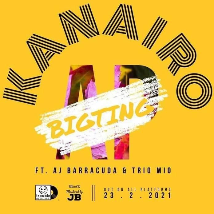 BigTing AP ft AJ Barracuda & Trio Mio – Kanairo