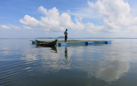An image of a fisherman